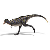 Dinosaur Aucasaurus. With clipping path over white Royalty Free Stock Photography
