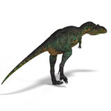 Dinosaur Aucasaurus. With clipping path over white Stock Photography