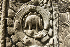 Dinosaur bas-relief in Angkor. Dinosaur bas-relief on the wall of Ta Prohm in Angkor Cambodia Stock Photos
