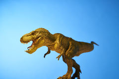 Dinosaur in blue background Royalty Free Stock Photo