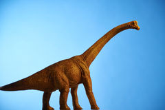 Dinosaur in blue background Royalty Free Stock Photography