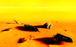 Dinosaur bones lying on desert Stock Image
