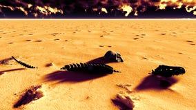 Dinosaur bones lying on desert. Dinosaur bones lying on the desert vector illustration