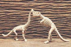Dinosaur bones on wooden background.  Stock Photography
