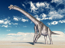 Dinosaur Brachiosaurus Stock Photos