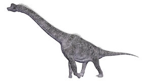 Dinosaur Brachiosaurus Stock Photography