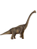 Dinosaur:brachiosaurus. It has a long neck and a stub tail Royalty Free Stock Images