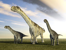 Dinosaur Camarasaurus Royalty Free Stock Photos