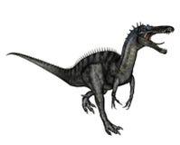Dinosaur carnivore illustration stock
