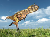Dinosaur Carnotaurus. Computer generated 3D illustration with the Dinosaur Carnotaurus Stock Photography