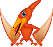 Dinosaur cartoon flying. Illustration of Dinosaur cartoon flying Stock Photo