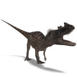 Dinosaur Ceratosaurus Royalty Free Stock Photo