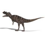 Dinosaur Ceratosaurus Stock Images