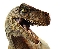 Dinosaur Closeup Royalty Free Stock Photos