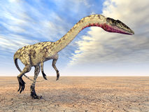 Dinosaur Coelophysis Royalty Free Stock Photo