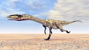 Dinosaur Coelophysis Stock Photo