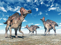 Dinosaur Corythosaurus Stock Photo