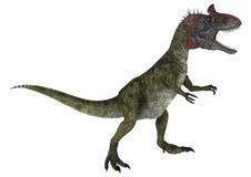 Dinosaur Cryolophosaurus Royalty Free Stock Image
