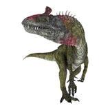 Dinosaur Cryolophosaurus Royalty Free Stock Images