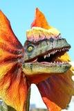Dinosaur de Dilophosaurus avec le collet orange Image libre de droits