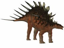 Dinosaur de Kentrosaurus-3D Images libres de droits