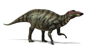 Dinosaur de Shuangmiaosaurus Image libre de droits