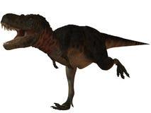 Dinosaur de Tarbosaurus Bataar-3D Images libres de droits