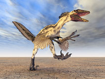 Dinosaur Deinonychus Royalty Free Stock Images