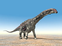 Dinosaur Diamantinasaurus Royalty Free Stock Photos