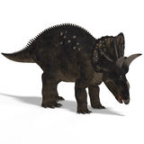 Dinosaur Diceratops. With Clipping Path over white royalty free illustration