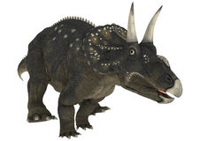 Dinosaur Diceratops Stock Photo
