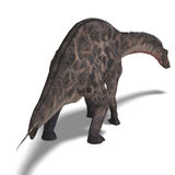 Dinosaur Dicraeosaurus. 3D rendering with Royalty Free Stock Photos