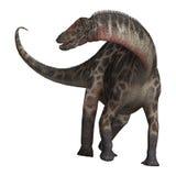 Dinosaur Dicraeosaurus Photo libre de droits
