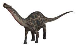 Dinosaur Dicraeosaurus Stock Images