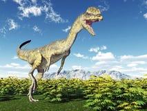 Dinosaur Dilophosaurus Stock Image