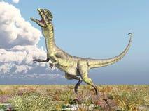 Dinosaur Dilophosaurus Stock Photos
