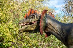 Dinosaur dilophosaurus. Huge full-size head. On a background of forest and blue sky with clouds royalty free stock photo