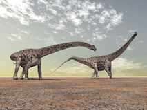 Dinosaur Diplodocus Stock Photography