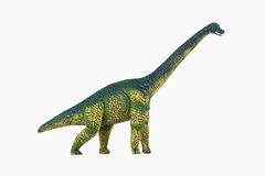 Dinosaur diplodocus. Dinosaur Toy diplodocus , isolated at white background Stock Image