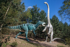 Dinosaur duel. A fight in the prehistoric forest, big plastic replica models. Allosaurus versus Diplodocus. Theropod versus Sauropod Royalty Free Stock Photo