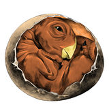 Dinosaur egg hatched sketch vector graphics. Dinosaur egg hatched rolled into a ball newborn sketch vector graphics color picture Royalty Free Stock Photography