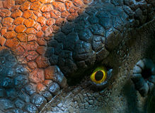 Dinosaur eye Stock Images