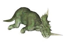 dinosaur för clipping 3d över white för styracosaurus för banaframförandeskugga Arkivbilder