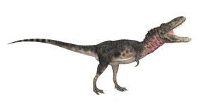 dinosaur för clipping 3d över white för tarbosaurus för banaframförandeskugga Royaltyfri Foto