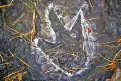 Dinosaur Footprint, South Hadley, Massachusetts royalty free stock image