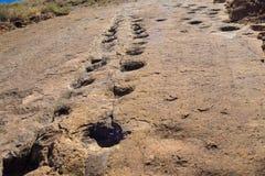 Dinosaur footprint in Toro Toro, Bolivia stock images