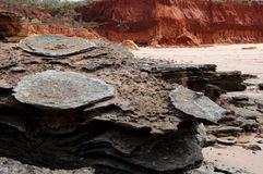 Dinosaur footprints - Broome - Australia Stock Photo