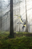Dinosaur in the forest. Graphic assembly painted dinosaur and photo of the forest Royalty Free Stock Photos