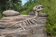 Dinosaur Fossil di modello dentro un parco in Italia fotografia stock