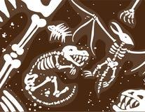 Dinosaur Fossils and Bones Royalty Free Stock Photos
